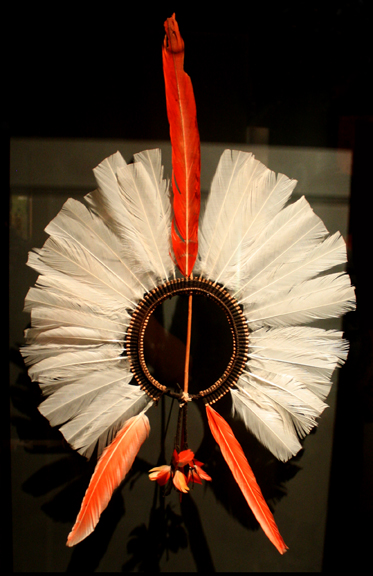 Kayapo headdress, C. 1910