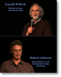Gerard Pollack and Robert Johnson eu2012 lectures