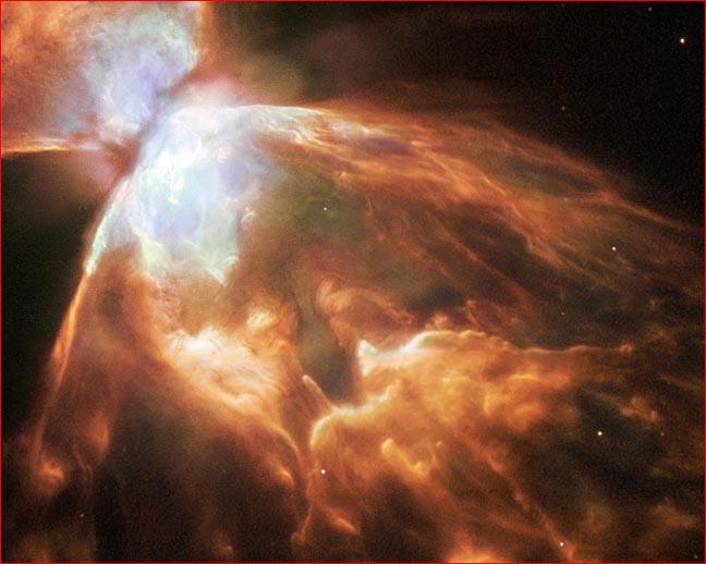 051230bugnebula.jpg