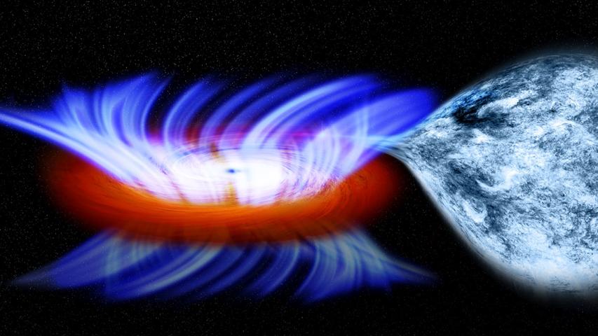 Black Hole Surprise