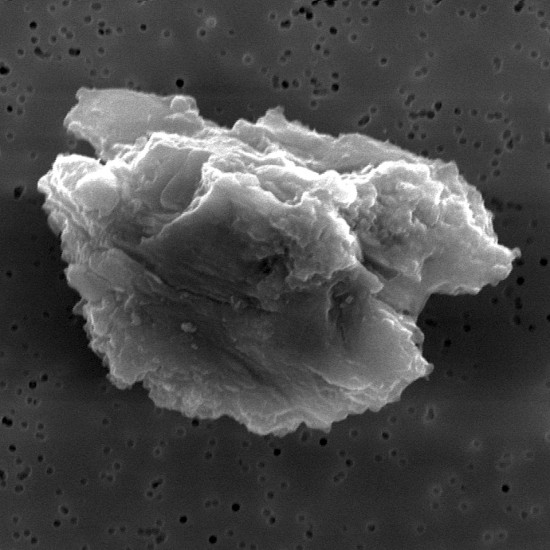 "Typical 10 micron ""interplanetary dust particle"" collected in the stratosphere. Credit: Cosmic Dust Group, Department of Astronomy, University of Washington, Seattle, Washington."