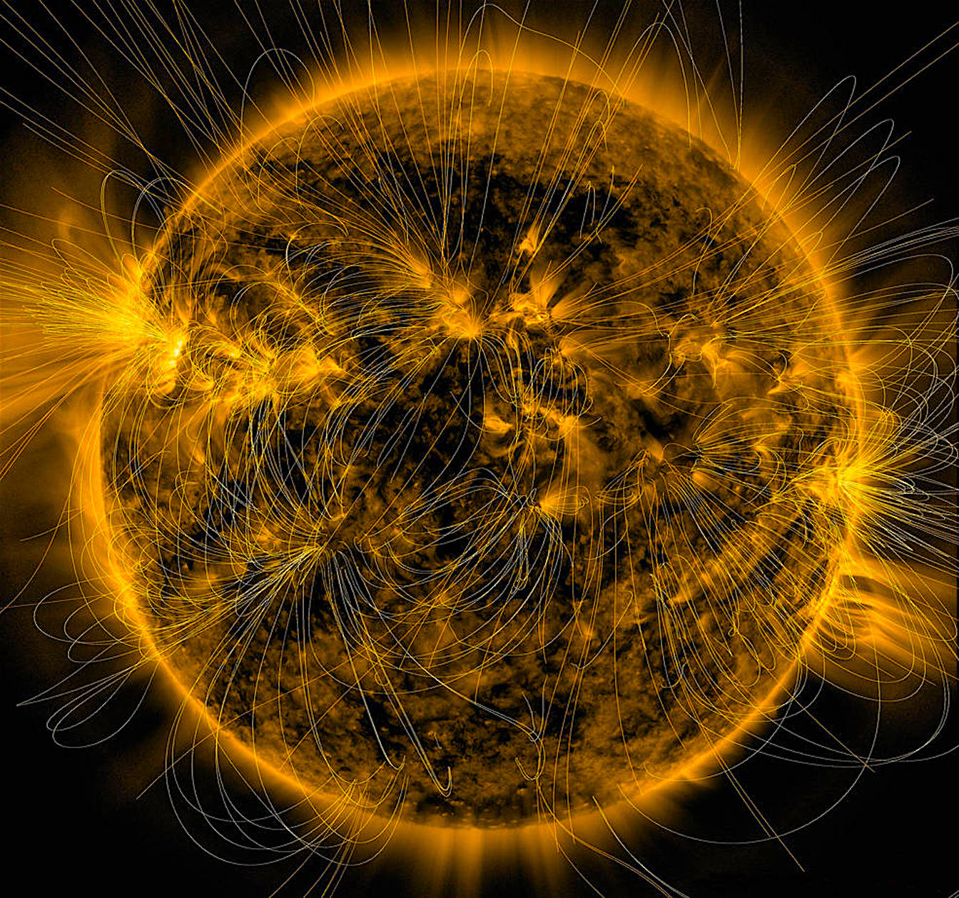 A model of the magnetic field in the Sun's atmosphere superimposed on a false-color, extreme ultraviolet (171 angstroms) image. Credits: NASA/SDO/AIA/LMSAL